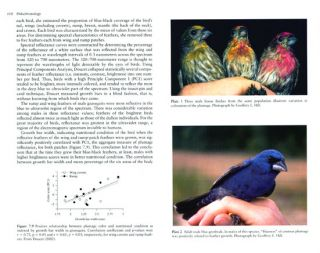 Ptilochronology: feather time and the biology of birds.