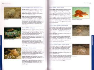 Melbourne's wildlife: a field guide to the fauna of Greater Melbourne.