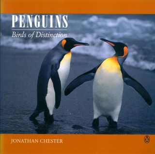 Penguins: birds of distinction. Jonathan Chester.