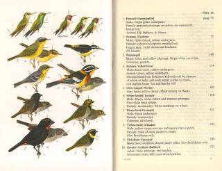 The birds of New Providence and the Bahama Islands.