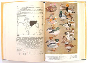 Handbook of the birds of India and Pakistan: together with those of Bangladesh, Nepal, Sikkim, Bhutan and Sri Lanka. First six volumes.