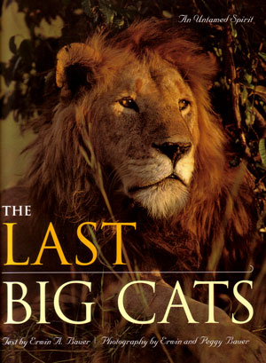 The last big cats: an untamed spirit. Erwin A. Bauer.