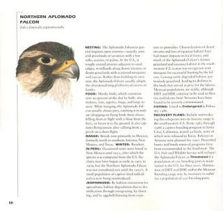 Birds in jeopardy: the imperiled and extinct birds of the United States and Canada, including Hawaii and Puerto Rico.