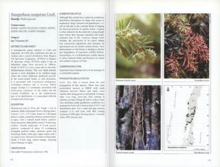 Threatened plants of Central and South Chile: distribution, conservation and propagation.
