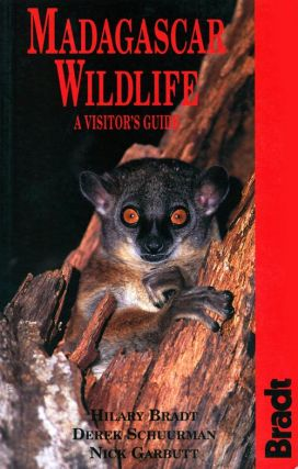 Madagascar wildlife: a visitor's guide. Hilary Bradt