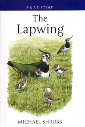 The Lapwing. Michael Shrubb