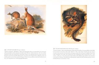 The animal illustrated 1550-1900: from the collections of The New York Public Library.