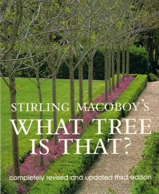 What tree is that? Stirling Macoboy.