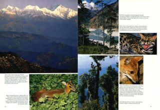 Wild India: the wildlife and scenery of India and Nepal.