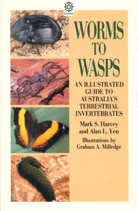 Worms to wasps: an illustrated guide to Australia's terrestrial invertebrates.