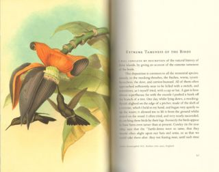The bedside book of birds: an aviary miscellany.