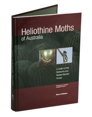 Heliothine moths of Australia: a guide to pest bollworms and related Noctuid groups