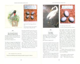 Oology and Ralph's talking eggs: bird conservation comes out of its shell.