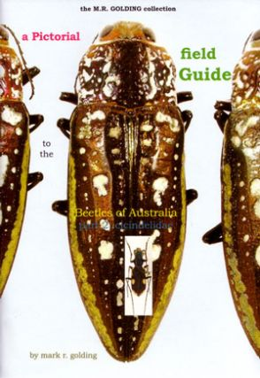 A pictorial field guide to the beetles of Australia: Part two, Cicindelidae. Mark R. Golding.
