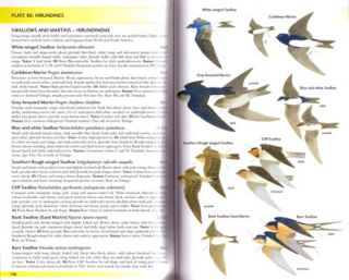 Field guide to the birds of Trinidad and Tobago.