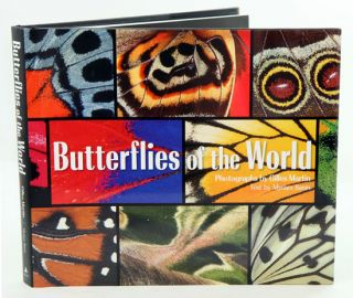 Butterflies of the world. Myriam Baran