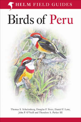 Birds of Peru. Thomas S. Schulenberg