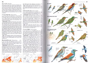 Collins bird guide: the most complete field guide to the birds of Britain and Europe.