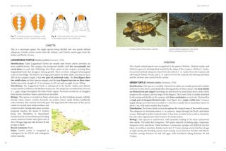 Field guide to reptiles of Victoria.