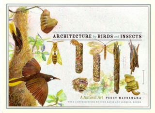 Architecture by birds and insects. John Bates, James H. Boone.