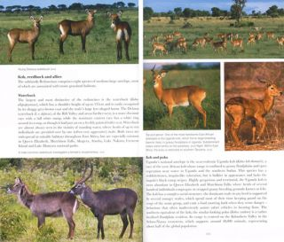 East African wildlife: a visitor's guide.