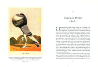 The wisdom of birds: an illustrated history of ornithology.