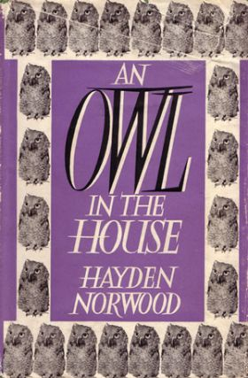 An owl in the house. Hayden Norwood