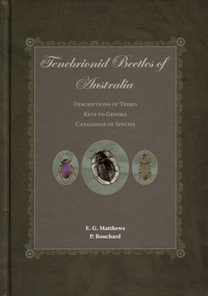 Tenebrionid beetles of Australia: descriptions of tribes keys to genera catalogue of species. E....