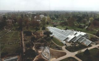 The gardens at Kew.