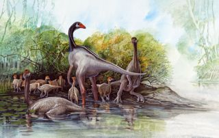 Sinornithomimus dongi. Original artwork from Feathered Dinosaurs. Peter Schouten.