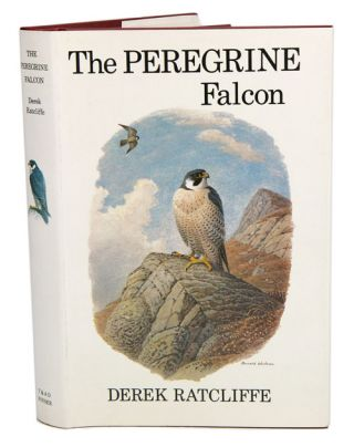 The Peregrine falcon. Derek Ratcliffe.