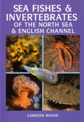 Sea fishes and invertebrates of the North Sea and English Channel. Lawson Wood