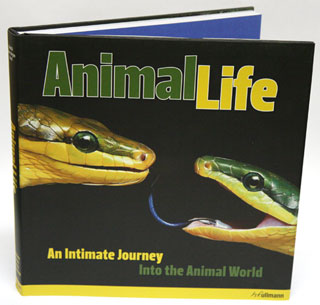 Animal life: an intimate journey into the animal world. Heidi Koch, Hans-Jurgen Koch