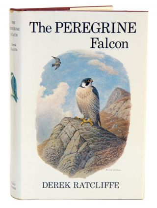 The Peregrine Falcon. Derek Ratcliffe