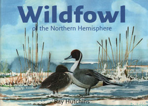 Wildfowl of the northern hemisphere. Ray Hutchins