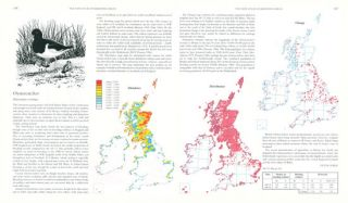 The new atlas of breeding birds in Britain and Ireland: 1988-1991.