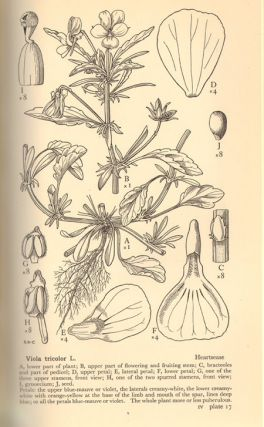 Drawings of British plants: being illustrations of the species of flowering plants growing naturally in the British Isles.