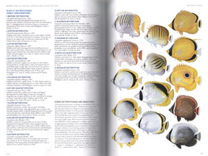 Field guide to marine fishes of tropical Australia and south-east Asia.
