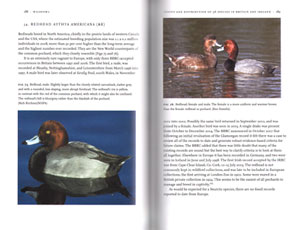 Wildfowl of Britain and Ireland.