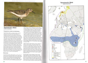 An atlas of wader populations in Africa and western Eurasia.
