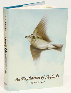 An exaltation of Skylarks. Stewart Beer