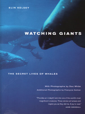 Watching giants: the secret lives of whales. Elin Kelsey.