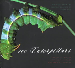 100 Caterpillars: portraits from the tropical forests of Costa Rica. Jeffrey C. Miller, Daniel H....