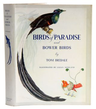 Birds of paradise and bower birds. Tom Iredale
