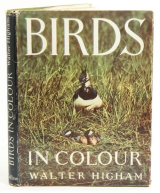 Birds in colour. Walter E. Higham.