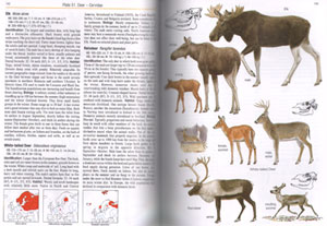 Mammals of Europe, North Africa and the Middle East.
