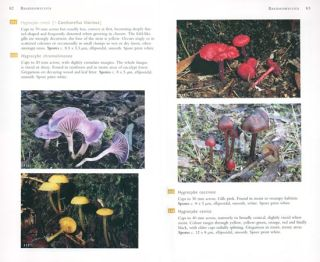 A field guide to Australian fungi.