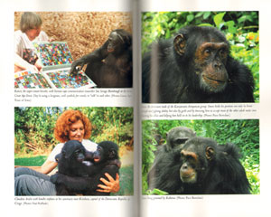 Among the Great apes: adventures on the trail of our closest relatives.