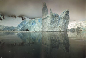 Antarctic: a tribute to life in the polar regions.
