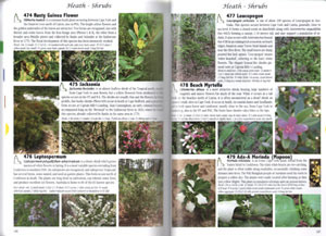 Plants of Cape York: the compact guide.